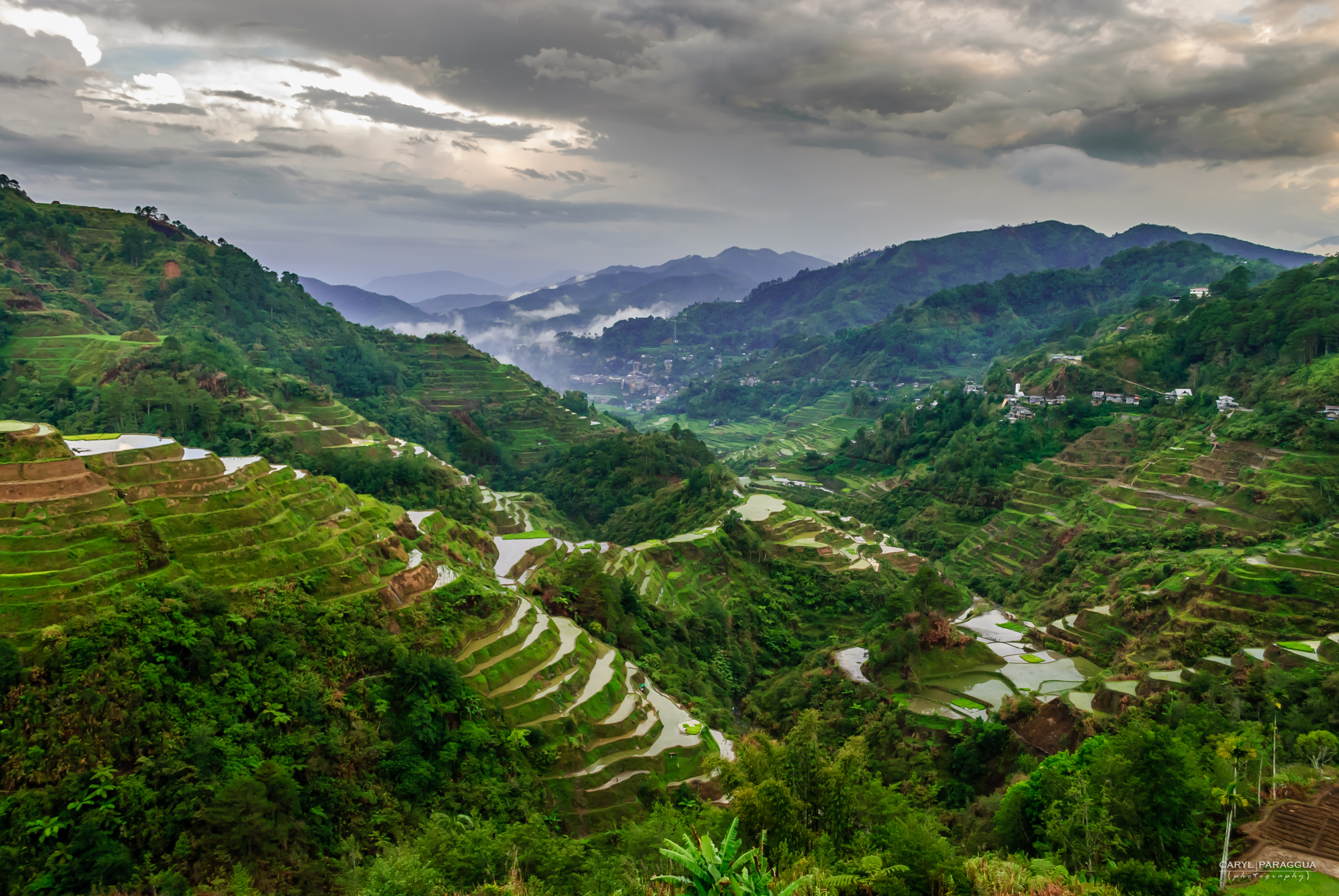 Rice terraces lenstrospective for What are terraces